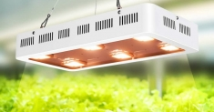 The Best COB LED Grow Light — as Good as Sunny Rays?