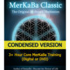 MerKaBa workshop condensed flower of life sacred geometry by Maureen St. Germain