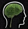 psycholog łomża - logo