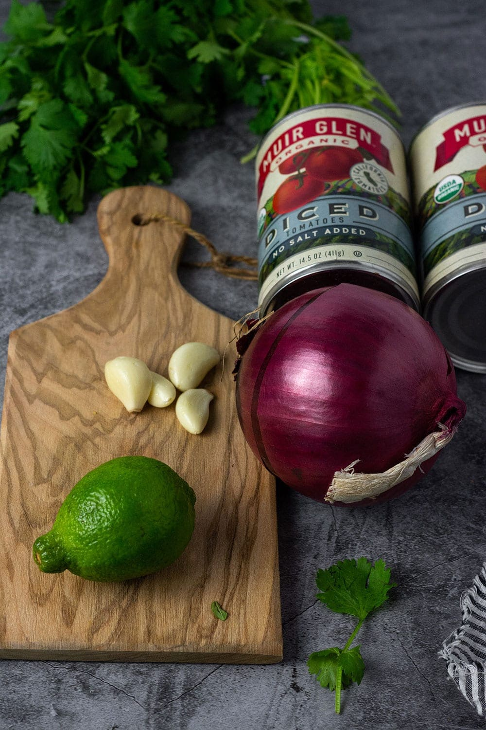 tomato salsa ingredients, chopped tomatoes, red onion, lime juice, garlic and cilantro
