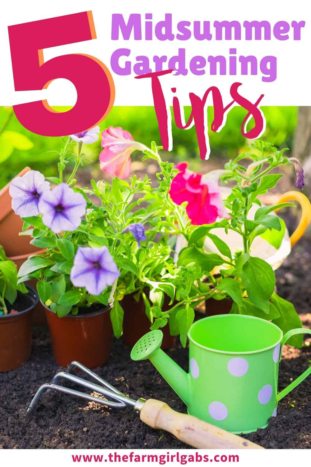 Summer is here and your gardens may be looking a little worn out from the heat. These 5 Ways to Spruce Up Your Midsummer Garden are helpful gardening tips to revive your summer garden! #gardeningtips #gardeningideas #plants #flowers