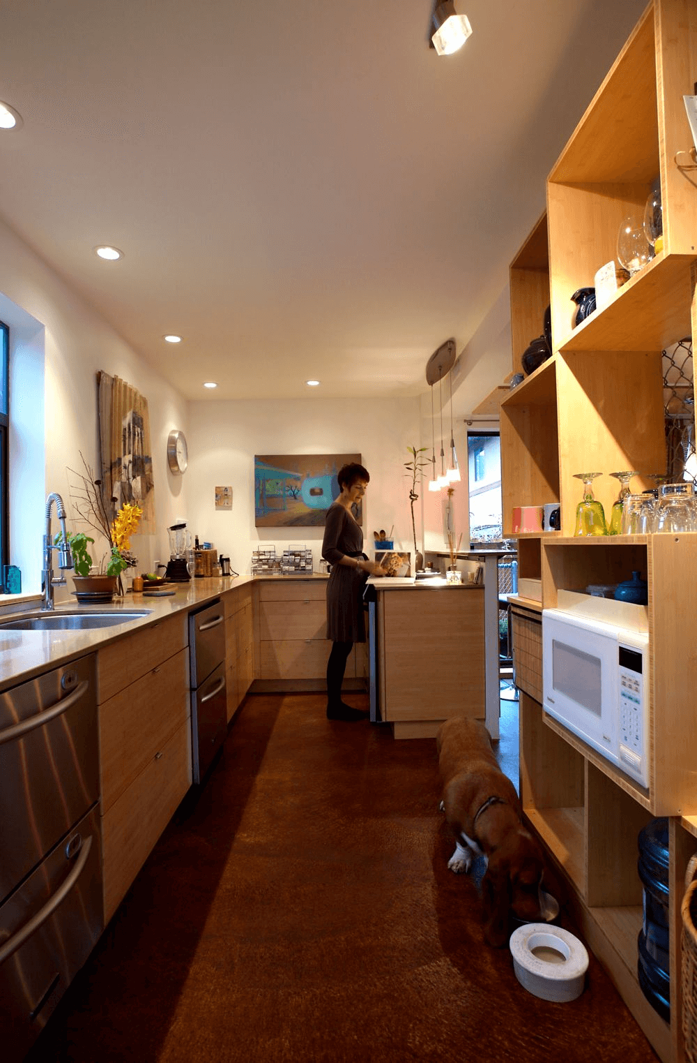 Kitchen shipping container design by Zigloo domestic Canada