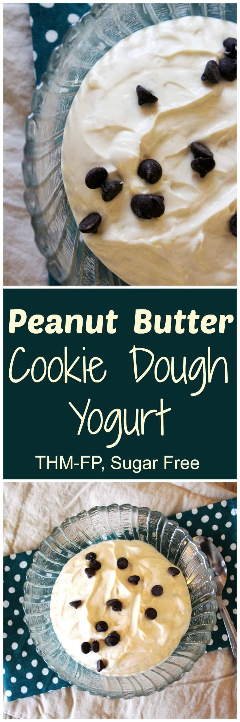 peanut-butter-cookie-dough-yogurt-pinterest