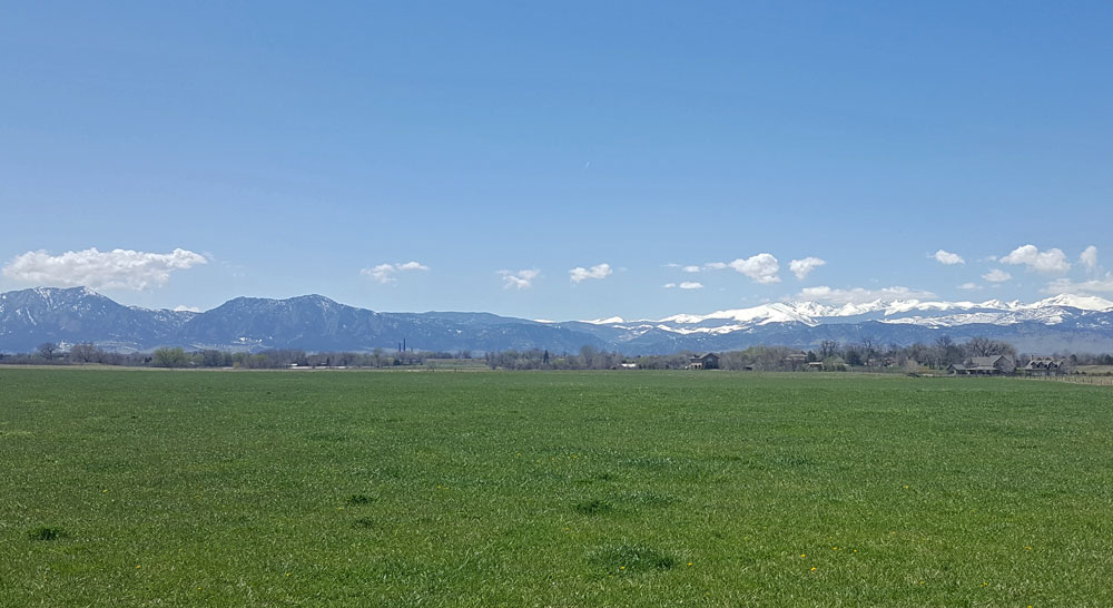 Rocky Mountains in the view of the Teller Farms Trail over the cow pasture.