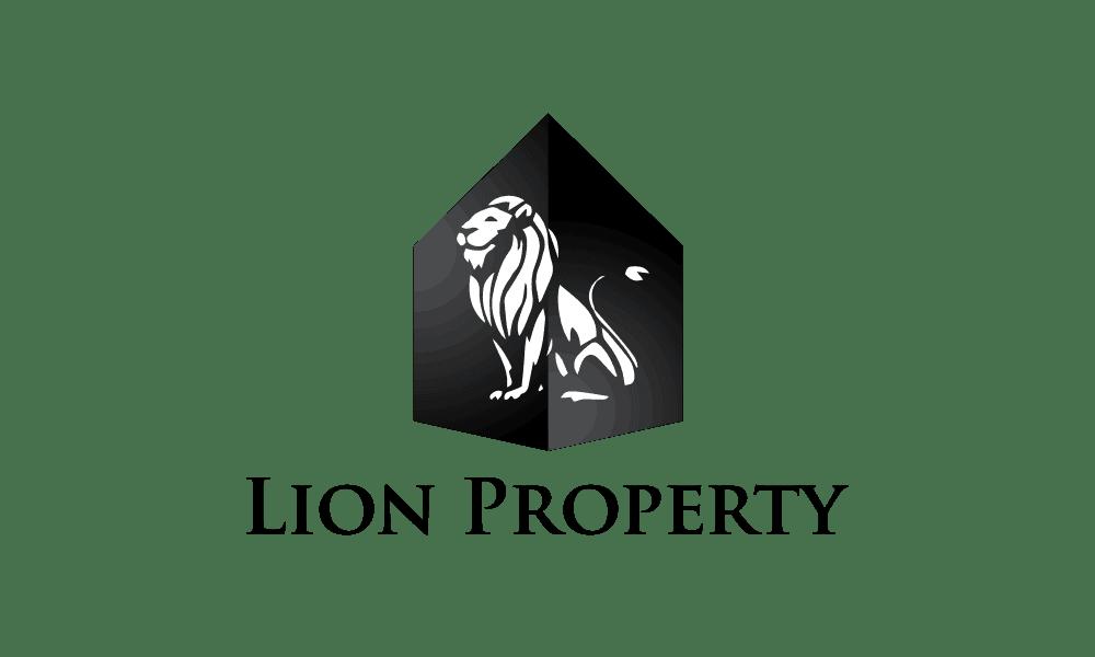 Solasta Review Lion Property