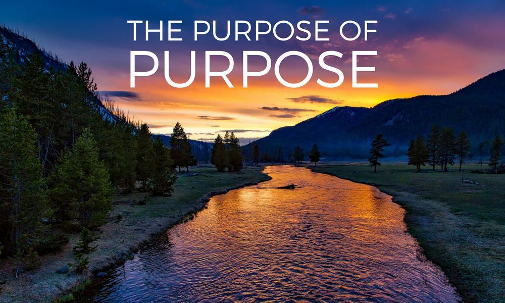 The Purpose Of Purpose