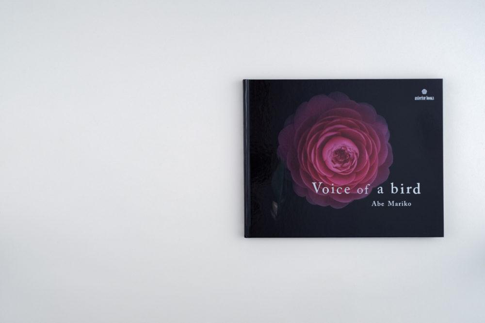 Voice_01A