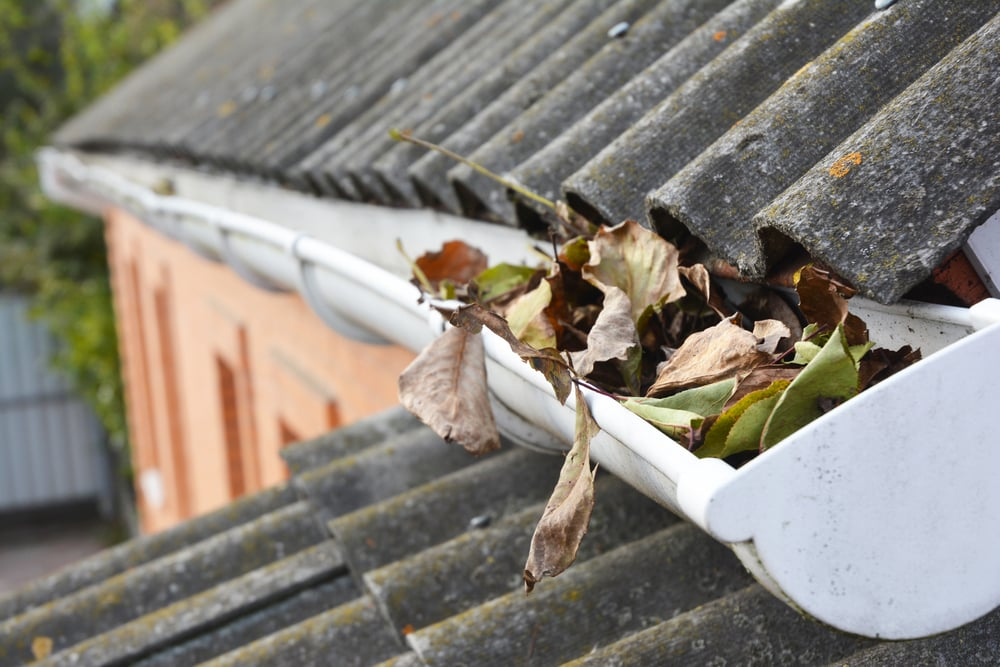 Clean Out Your Downspouts And Gutters
