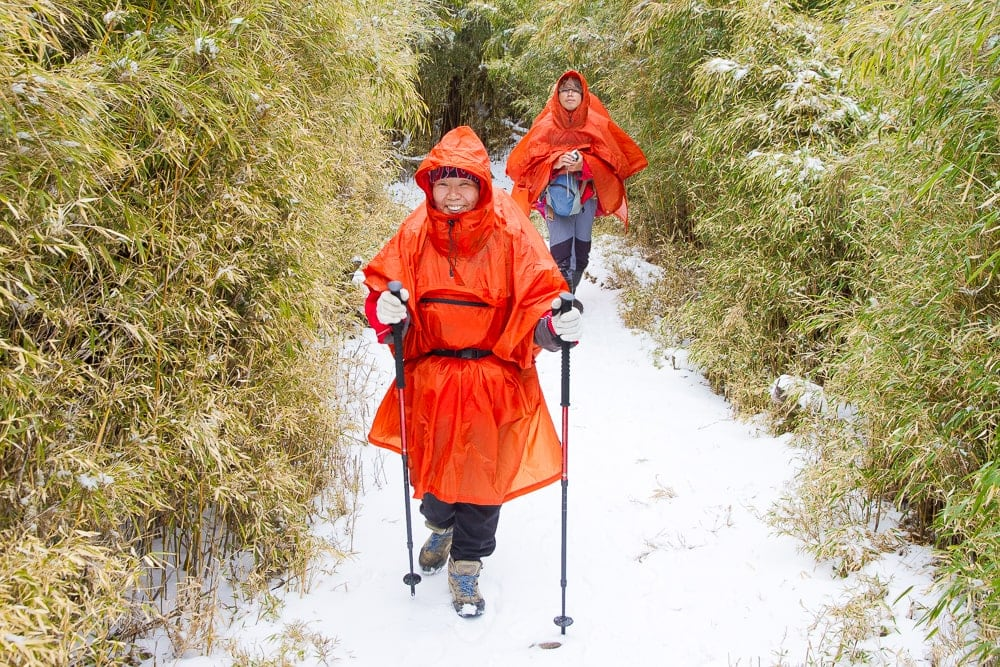 Hiking Snow Mountain, one of the best January activities in Taiwan
