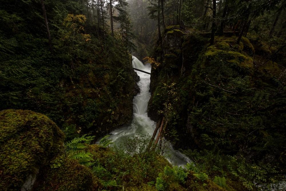 little qualicum falls flowing through a stunning green landscape