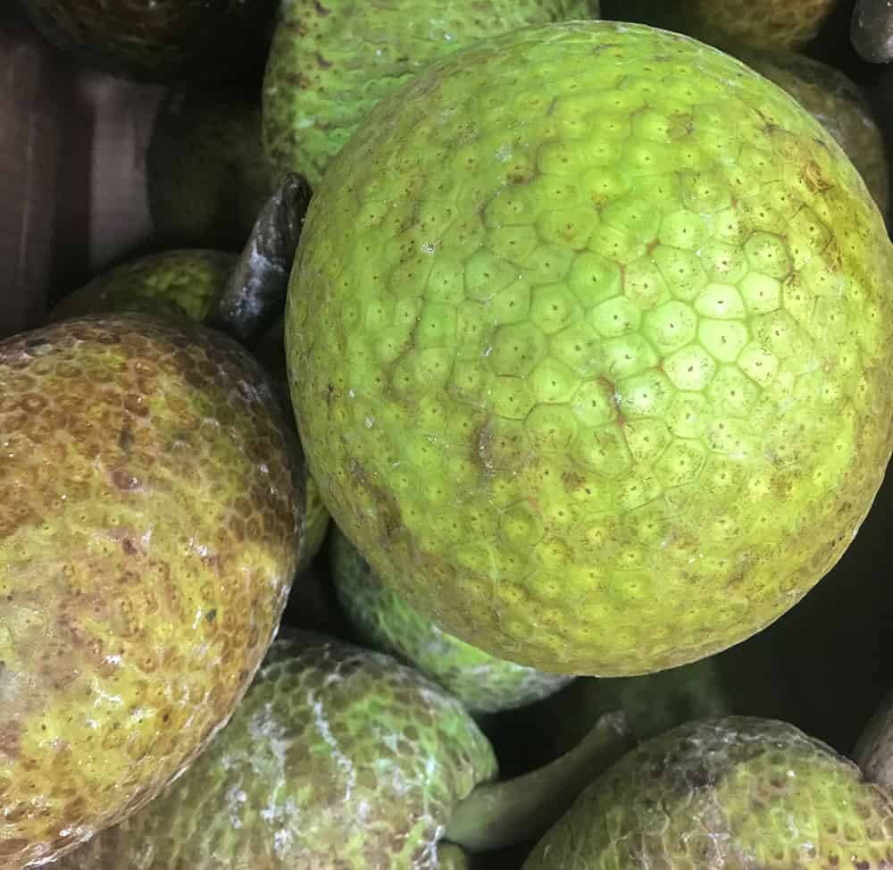 Roast Breadfruit