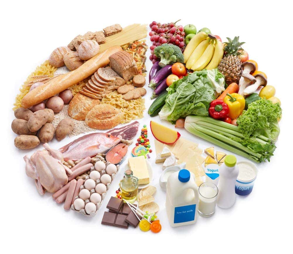Diet During Pregnancy: A Complement to Nutrition
