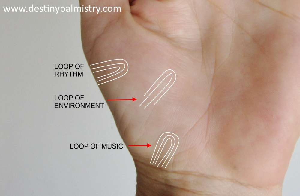 loop of rhythm, loop of environment, loop of music