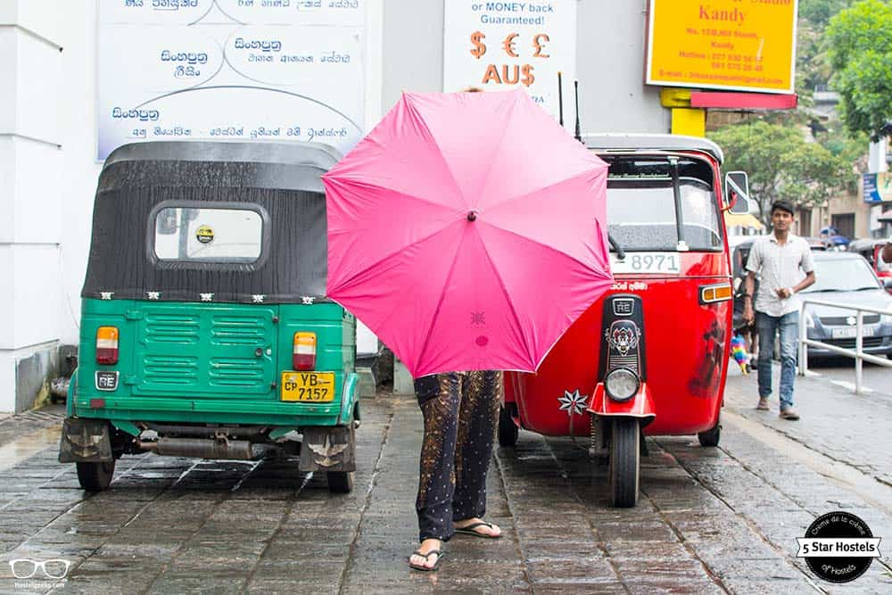 Takeing a Tuk Tuk is a must in Sri Lanka!
