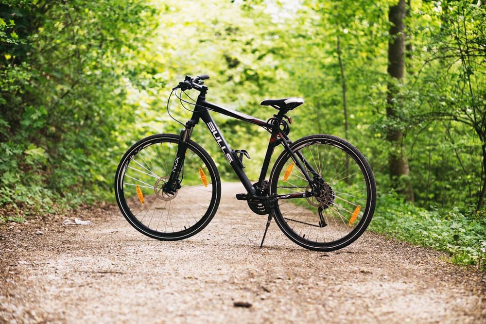 Bicycle in the forest