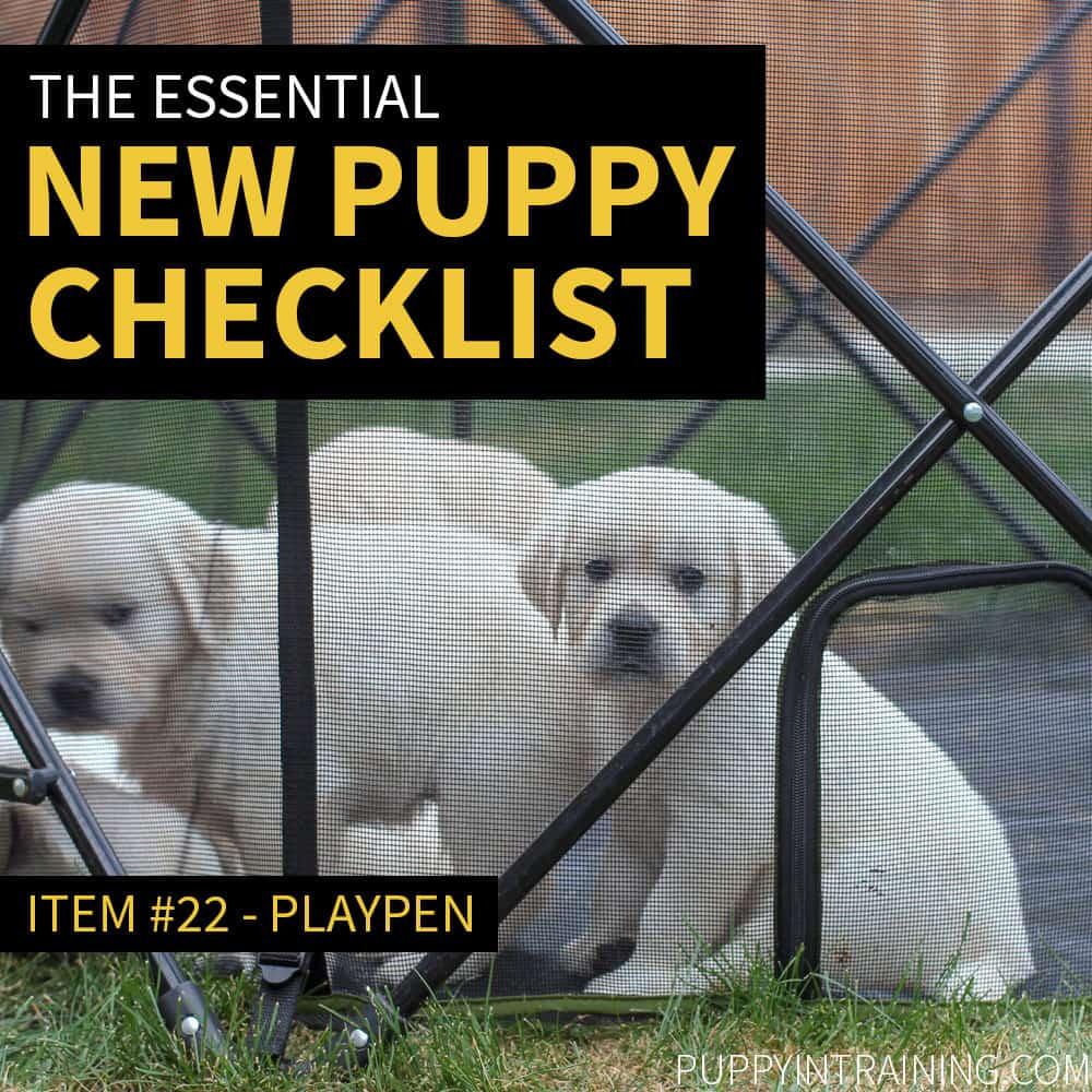 New Puppy Checklist - Puppies In Playpen
