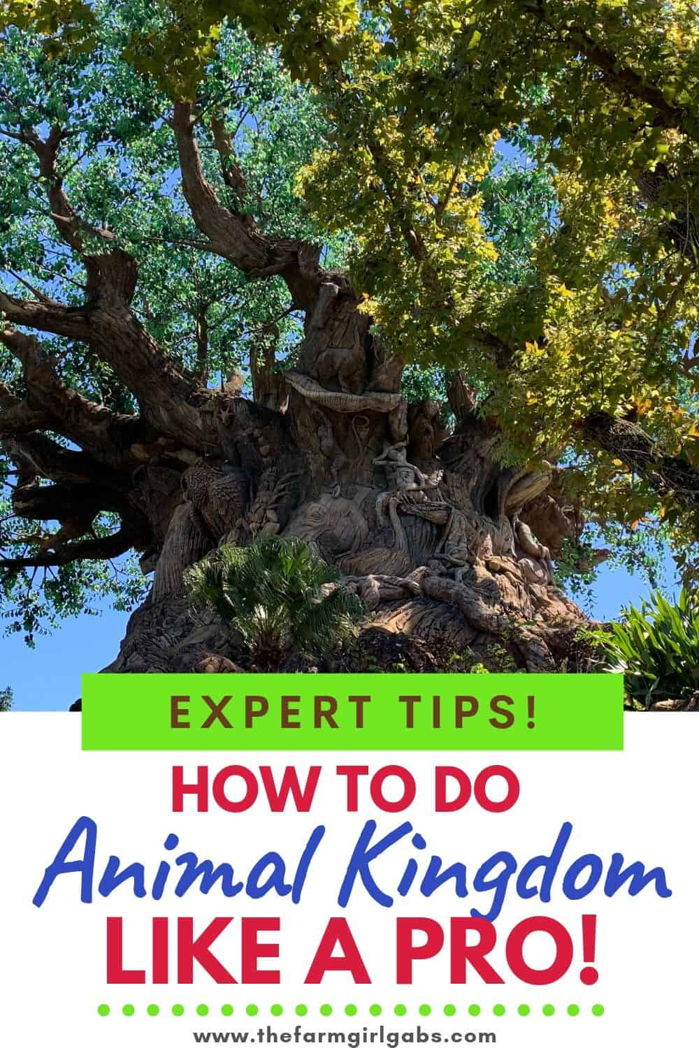 The Best tips for visiting Animal Kingdom. Follow these Animal Kingdom pro tips to plan you day at the park like an expert. #animalkingdom #animalkingdomtips #disneytips