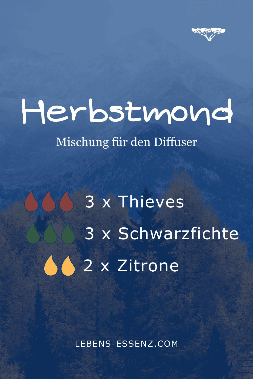 Herbstmond - Mischung für den Diffusor - mit ätherischen Ölen Thieves, Schwarzfichte, Zitrone
