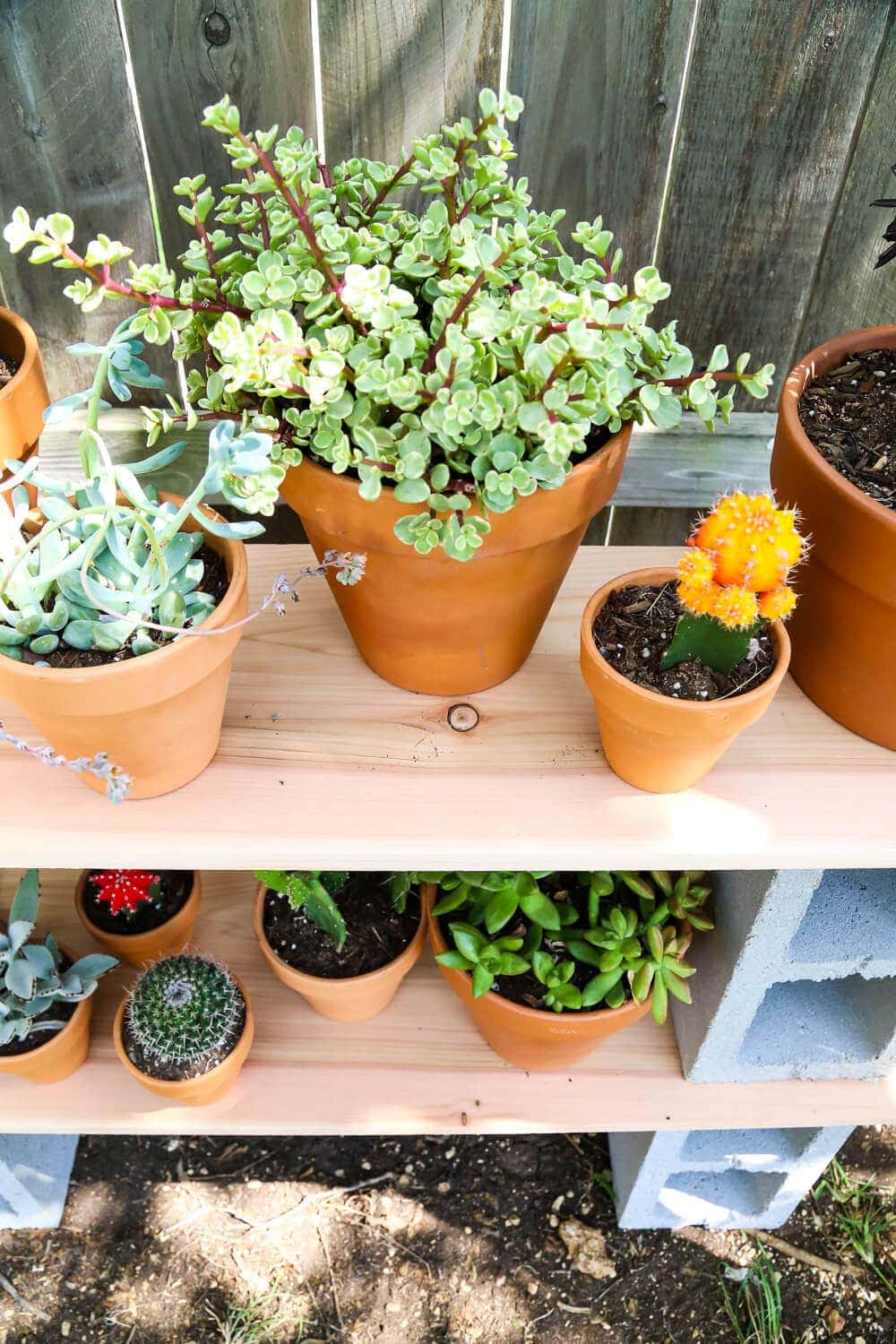 Easy outdoor plant shelf