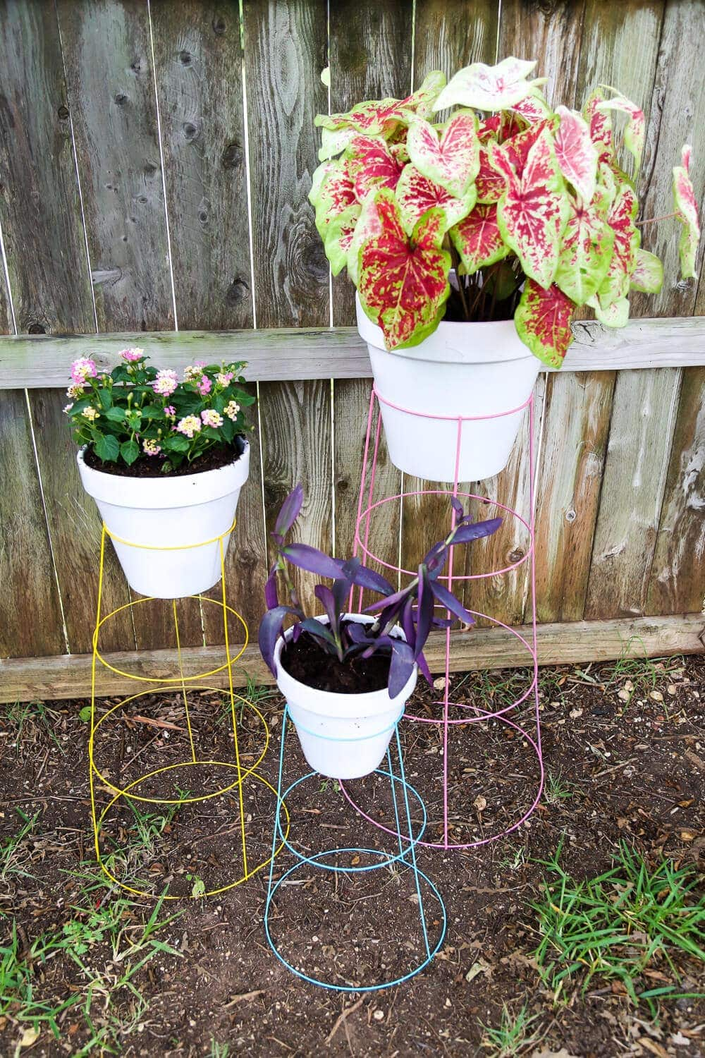 diy tomato cage plant stands