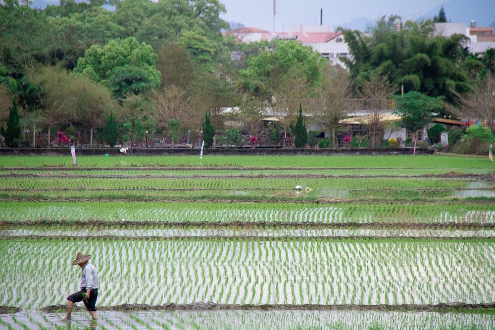 Yuli, Taitung