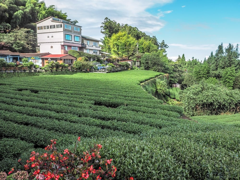 Chia Yuen guesthouse, Cuiti B&B, Shizhuo, Taiwan