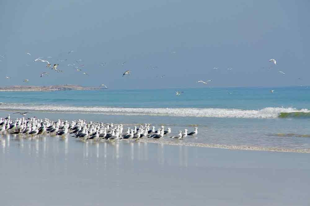 viaggio-fotografico-in-Oman-1