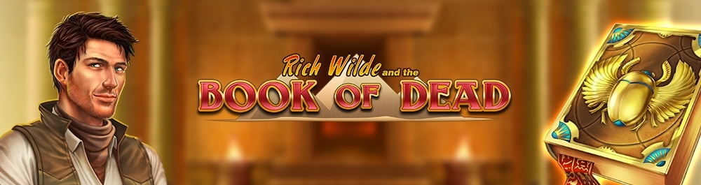 book of dead banner video slot playnGo