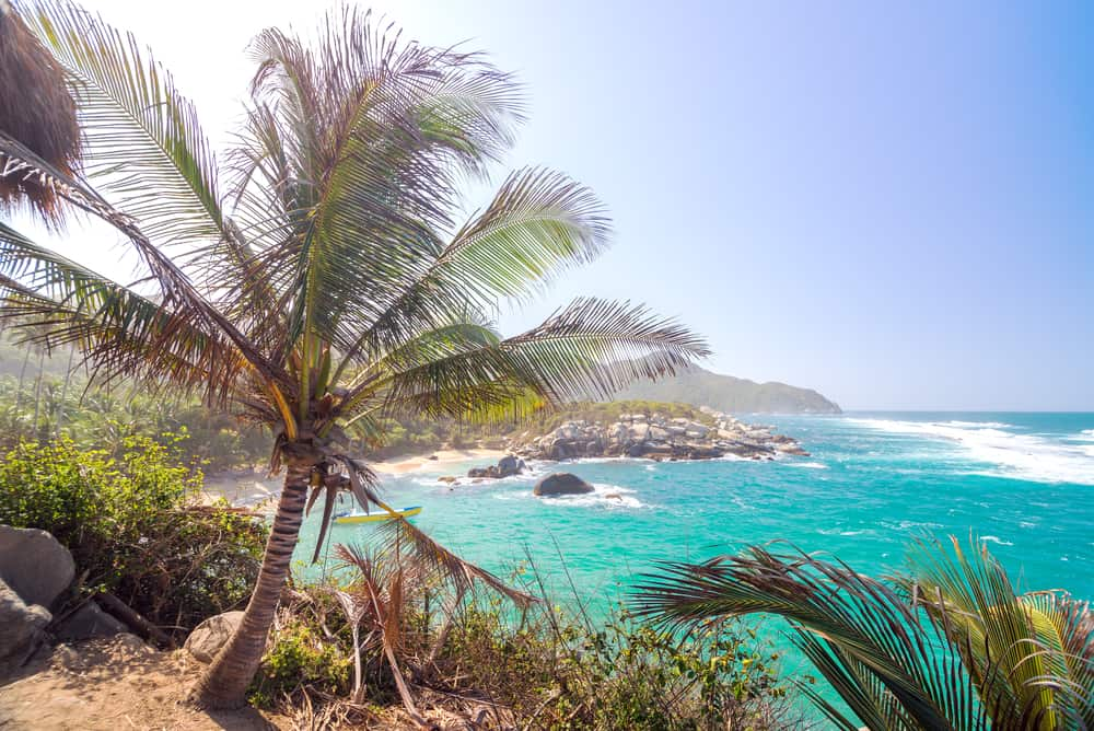 Caribbean Coast+ Palm trees in Tayrona park, Colombia