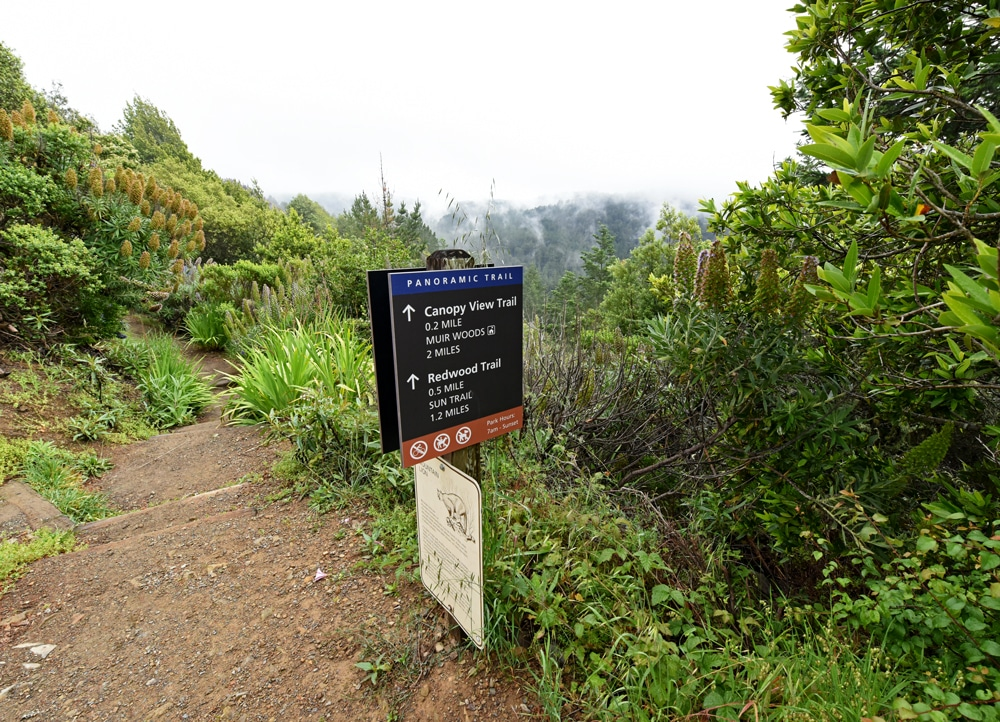 Trailhead towards Muir Woods from Mountain Home Inn