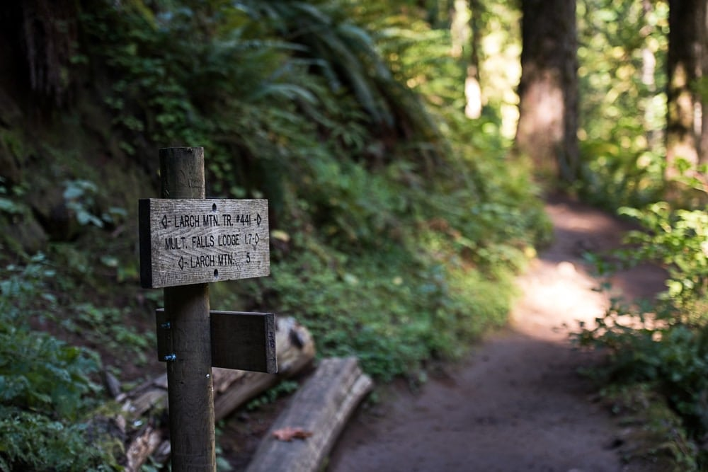 Sign post on the Multnomah-Wahkeena Loop trail showing directions and distances to Larch Mountain Trail and others