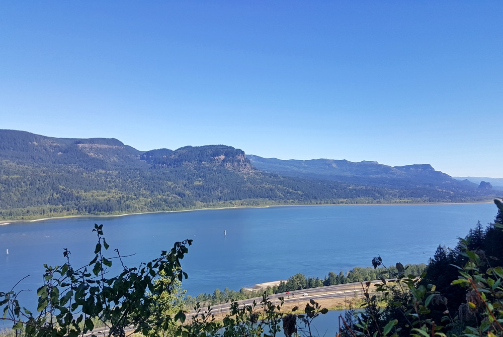 View of the Columbia River Gorge from Lemmon's Viewpoint