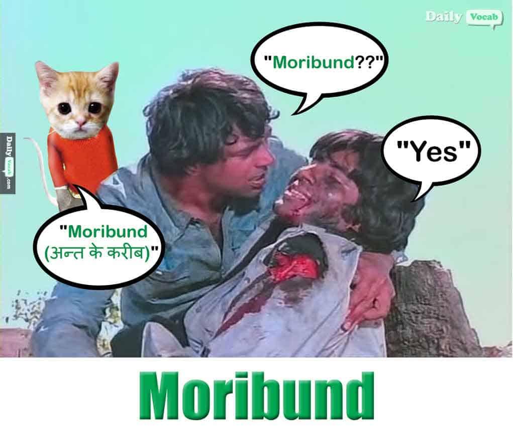 Moribund Meaning In Hindi, Moribund Meaning In English