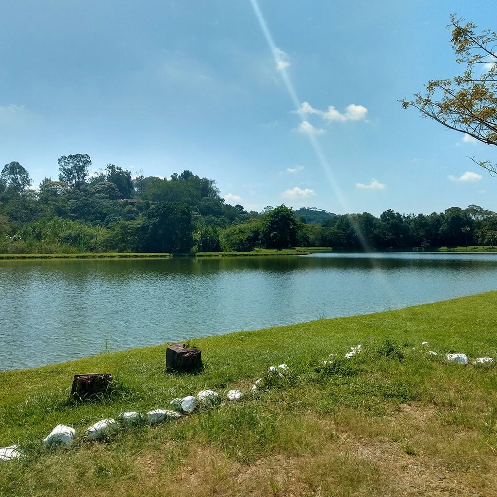 Lago de casa de lujo