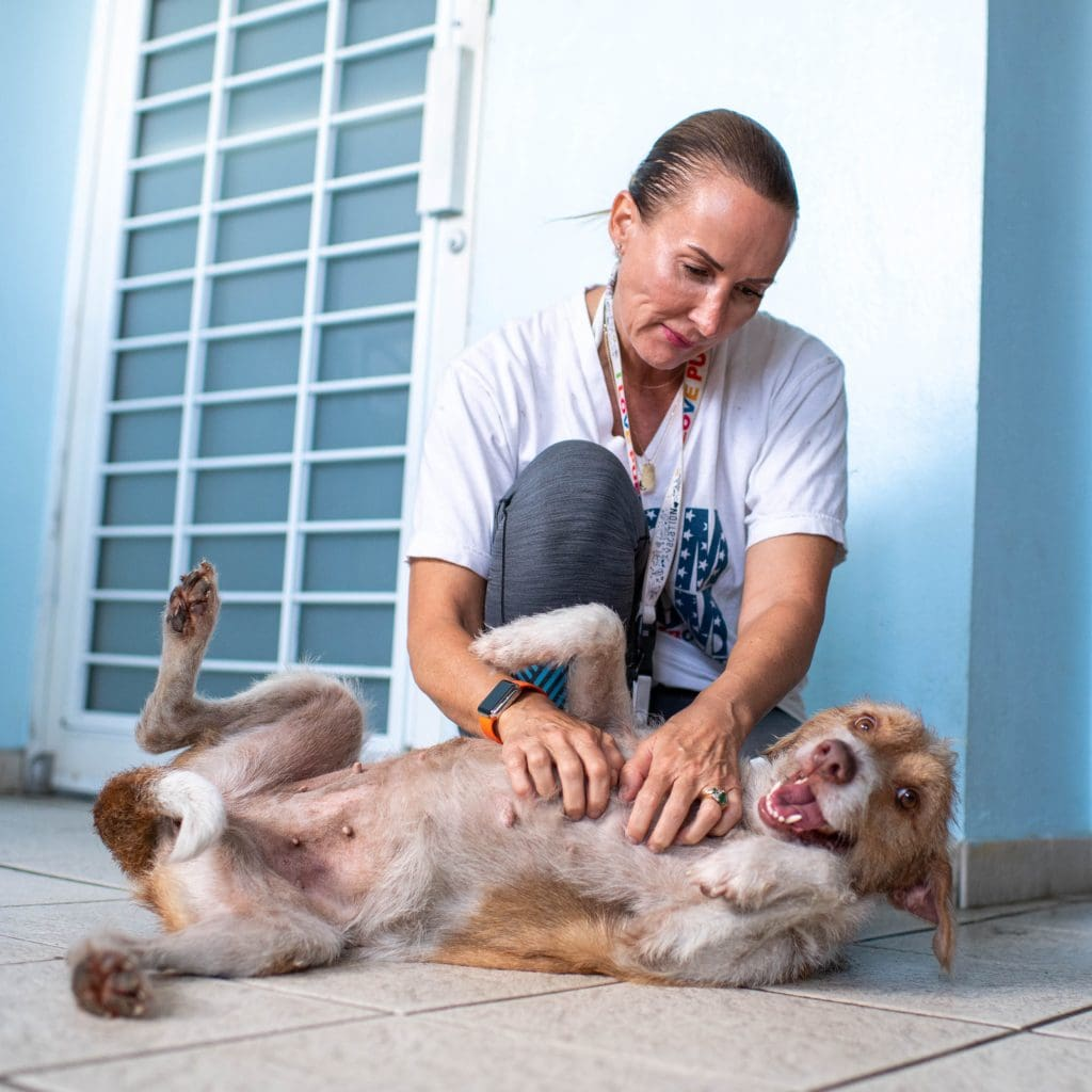 Image: Chrissy Beckles giving one lucky pup some belly scratches