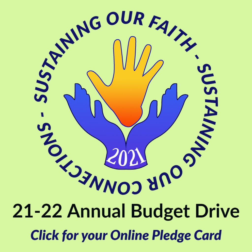 Annual Budget Drive, Online Pledge Card