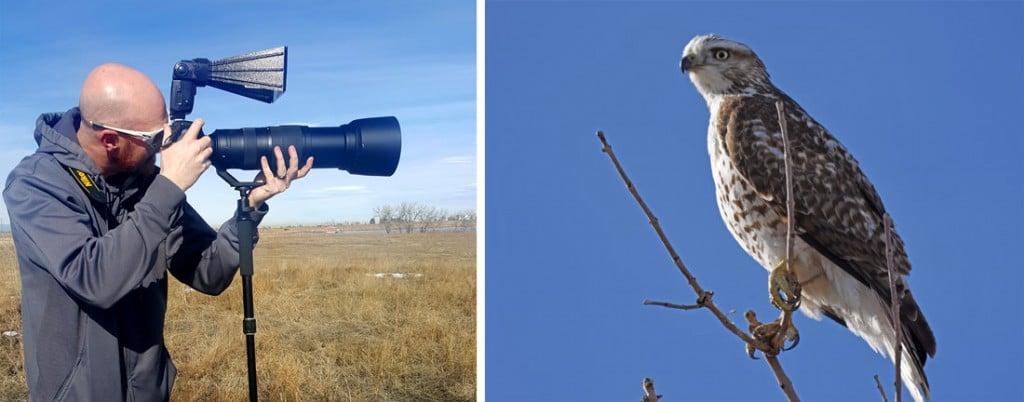 Buddy using a telephoto lens taking photos of a hawk at Rocky Mountain Arsenal