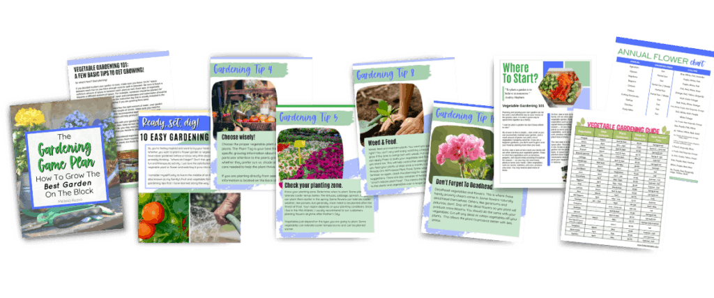 gardening game plan ebook images