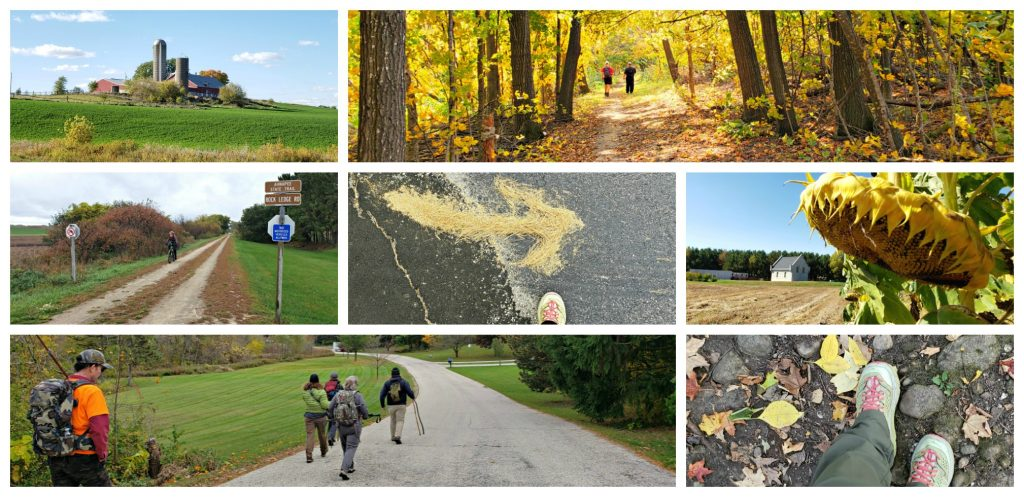 Collage of 7 photos showing roads, paths and trails found along the Wisconsin Camino