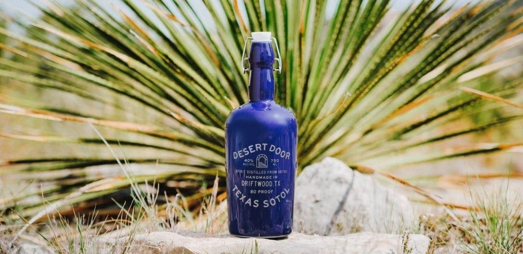 indigo blue bottle of sotol liquor sits on desert floor in front of a green sotol plant