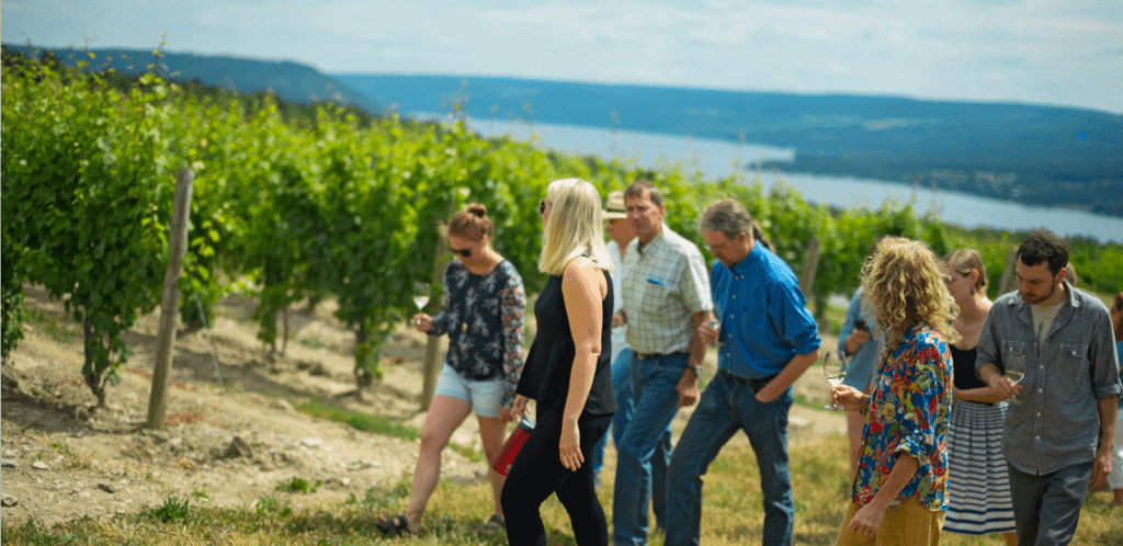 group of young people, some with wine glasses walk up steep hill covered in grape vines with Keuka Lake in background below at one of best Finger Lakes wineries