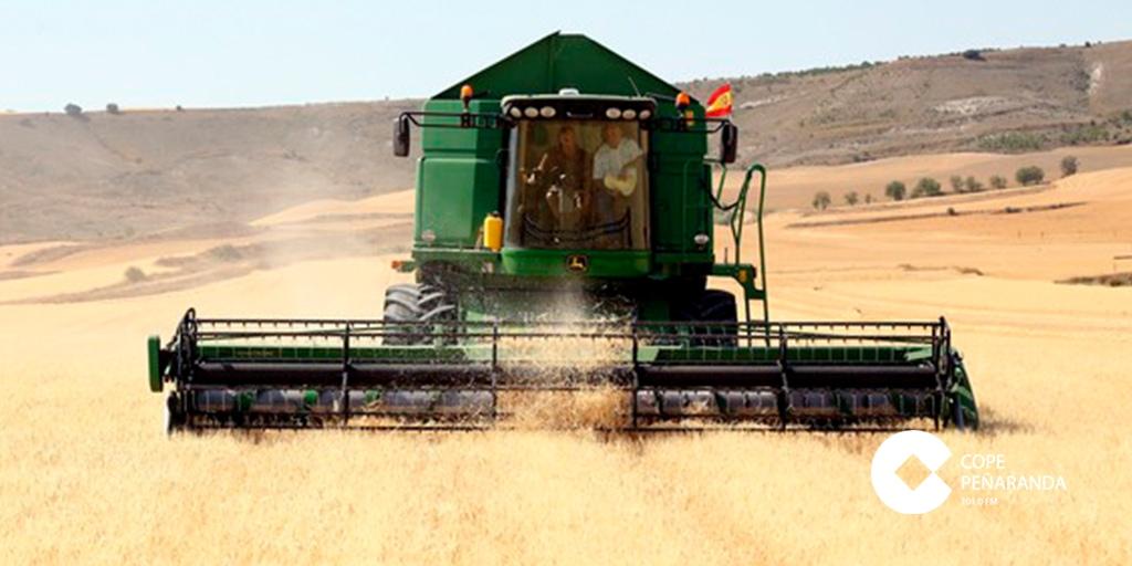 Las semillas certificadas garantizan mayor productividad y calidad