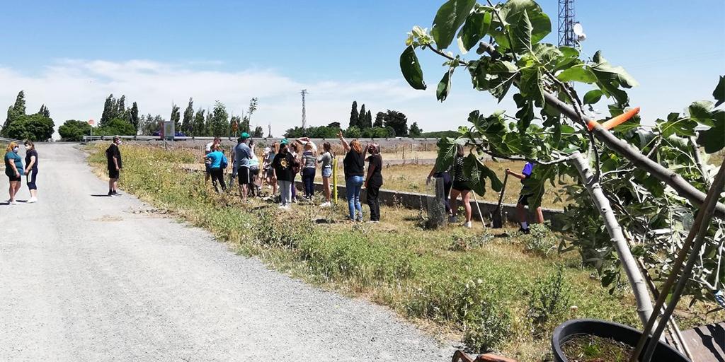 Una decena de personas plantaron árboles en Rágama