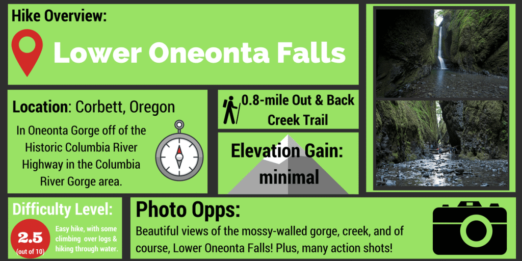 Lower Oneonta Falls Hike Infographic