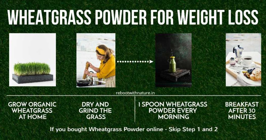 Wheatgrass powder for Weight loss