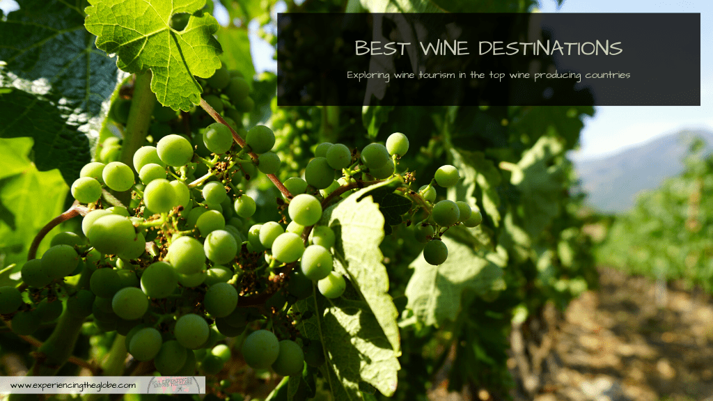 Here's everything you need to know to get acquaintance with the best wine destinations of the world: an overview to understand each country better, a brief description on the top regions to visit, and suggestions on which wines to try. Welcome to the wine world! – Experiencing the Globe #WineDestinations #WineTourism #DestinationsForWineLovers #OldWorldWine #NewWorldWine