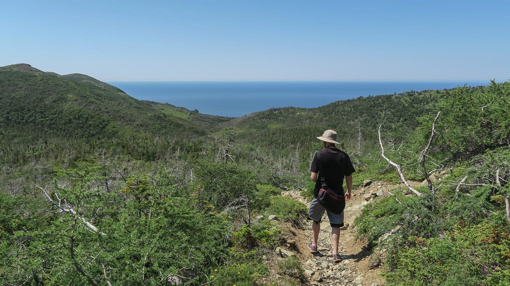 Buddy hiking and enjoying the views at Tablelands in Gros Morne National Park