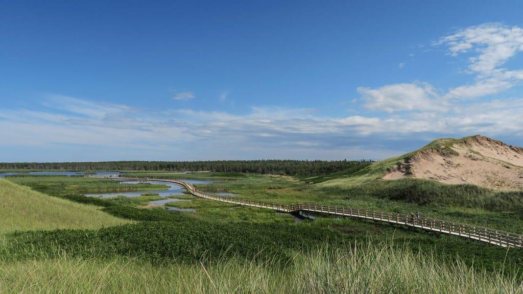 greenwich dunes in Prince Edward Island