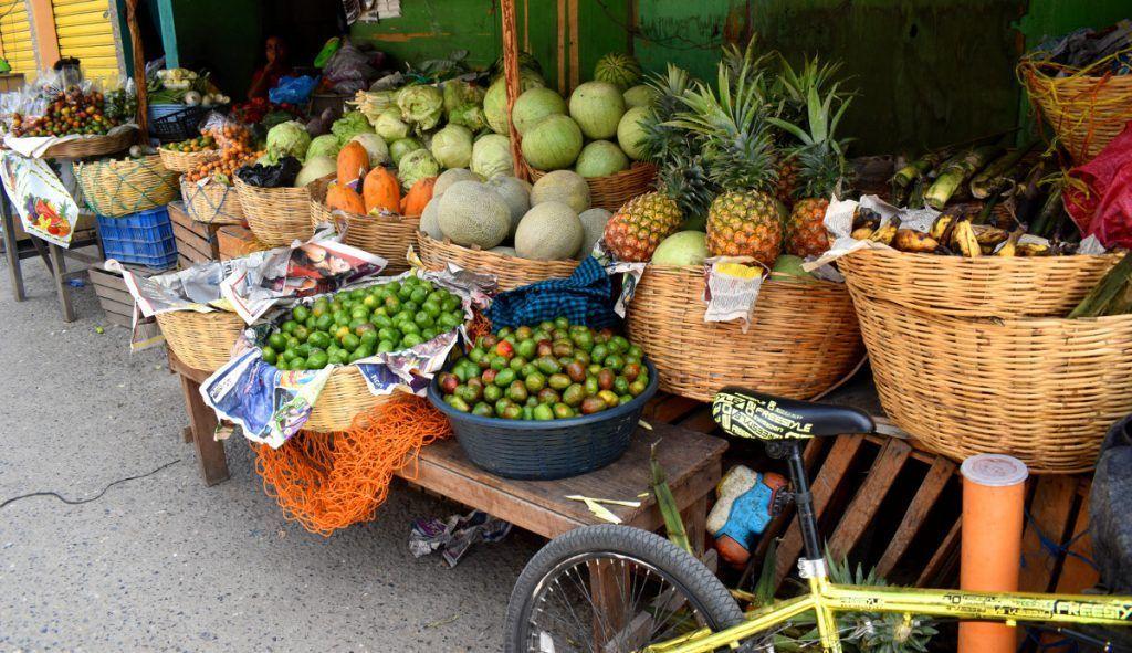 Productos agrícolas del Valle del Motagua
