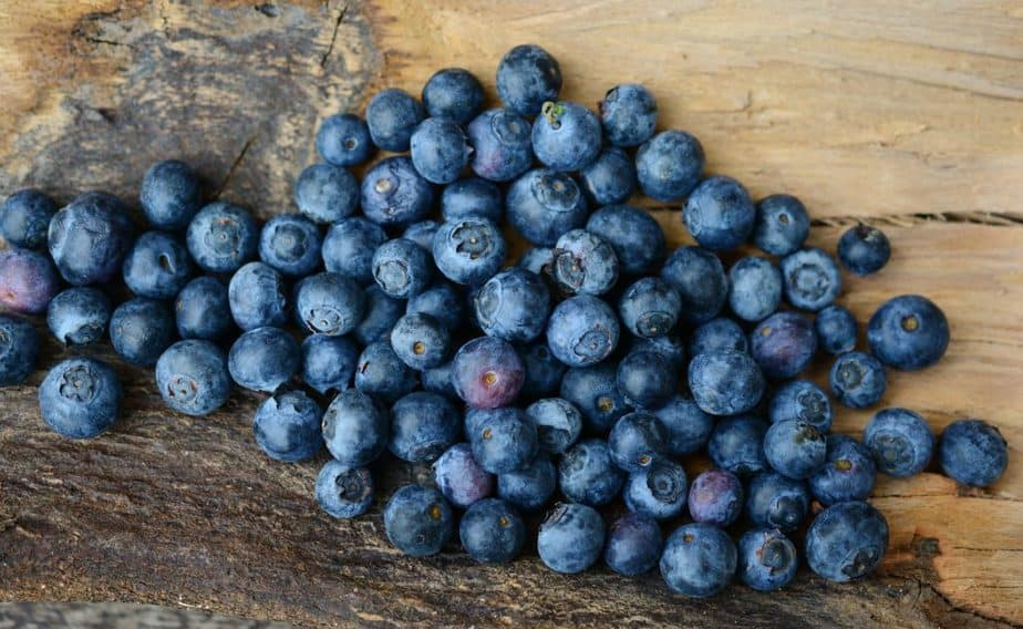 superfoods berries blueberry